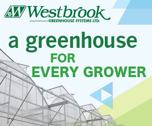 Westbrook Greenhouse Systems A greenhouse for every grower