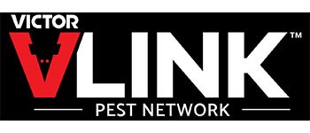 VLink Pest Network