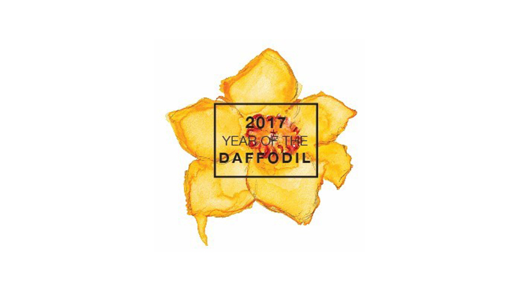 National Garden Bureau Presents 2017 As The Year Of The Daffodil
