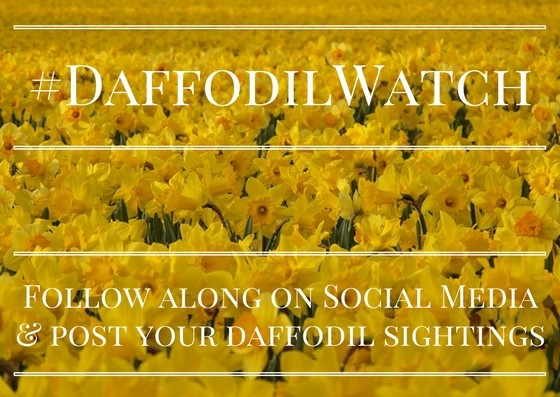 National Garden Bureau Is Proud To Present The Year Of The Daffodil In  Partnership With The American Daffodil Society.