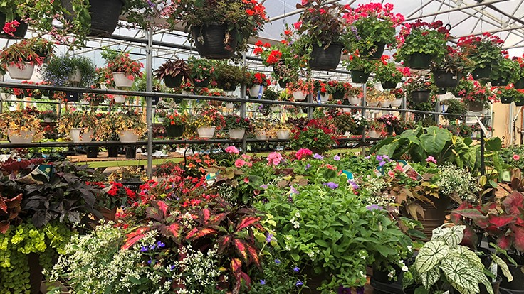 Garden Centers Play Catch Up After Late Start To Spring Season