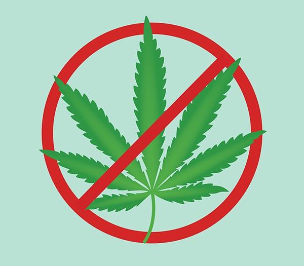 Ban On Recreational Marijuana Upheld In West Springfield Mass As