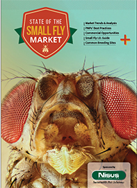 2018 State of the Small Fly Market Cover