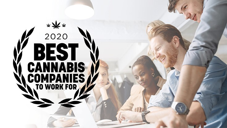 Best Company To Work For 2020 Announcing: The Best Cannabis Companies To Work For—2020