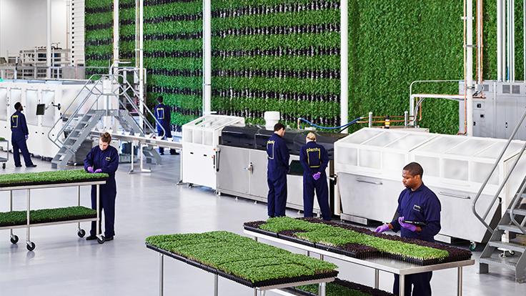 Budúcnosť poľnohospodárstva: Vertikálne farmy riadené umelou inteligenciou a robotmi (?)