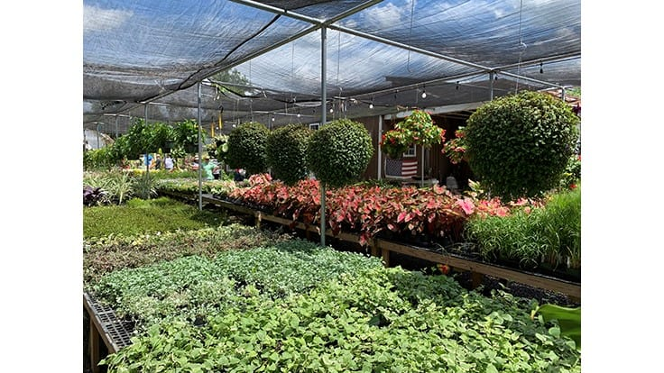 Many Garden Centers Greenhouses And