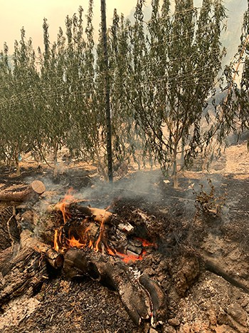 california wildfire sweet creek farm