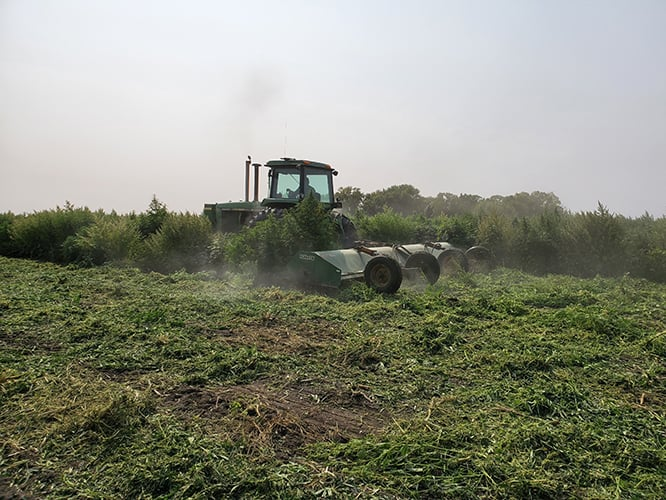 iowa hemp harvest