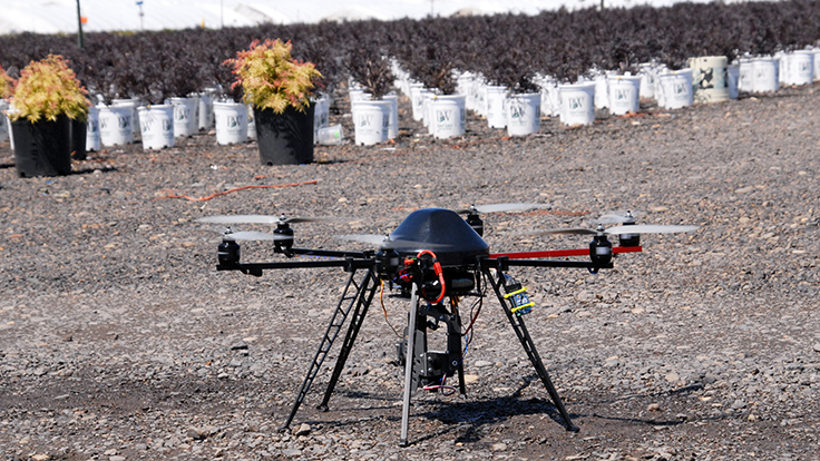 Learn How To Incorporate Drones Into Your Nursery