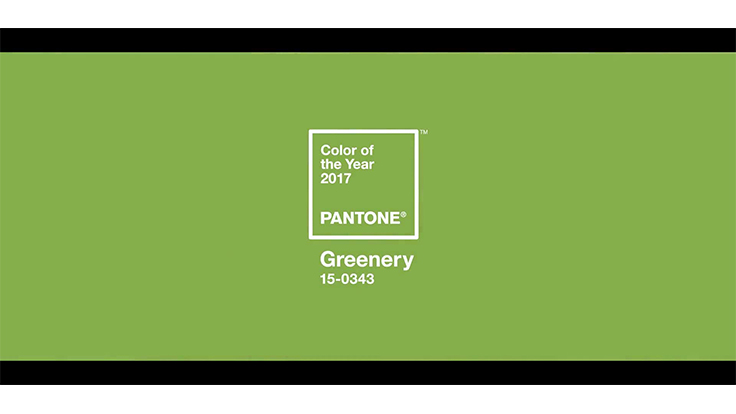 Pantone declares 'Greenery' the 2017 Color of the Year