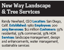New Way Landscape & Tree Services