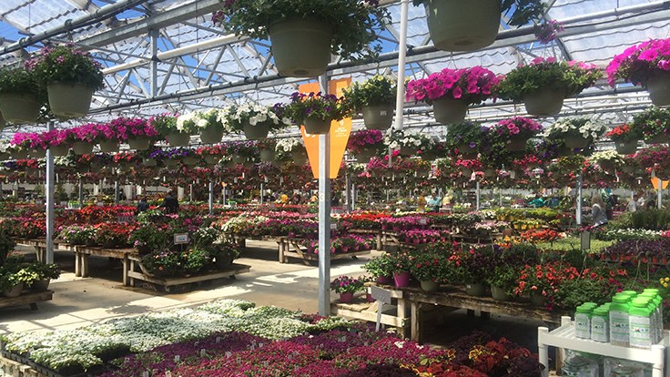 Beau Petitti Garden Centers Planning New Canton, Ohio, Store   Garden Center  Magazine