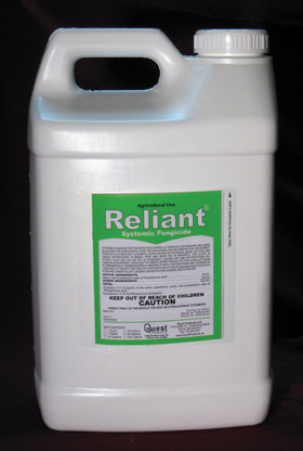 Reliant Systemic Fungicide - Image