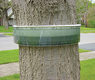 BugBarrier Tree Band - Image