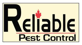 reliable pest control celebrates 10th anniversary