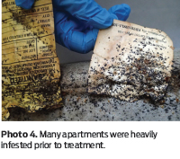 Cover Story] Silica Gel: A Better Bed Bug Desiccant - PCT