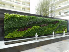 Versa Green Wall System - Image