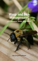 Wasp and Bee Management: A Common Sense Approach - Image