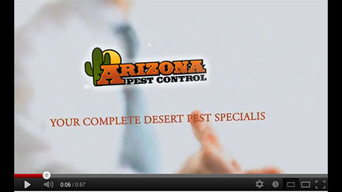 Web Video from Arizona Pest Control - Image