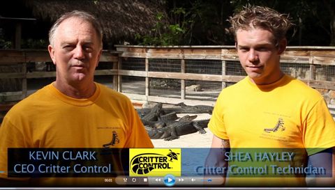 Gator Wrestling Sponsorship Promo from Critter Control - Image
