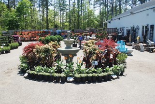Meadows Farms Nurseries Bringing balance Garden Center Magazine