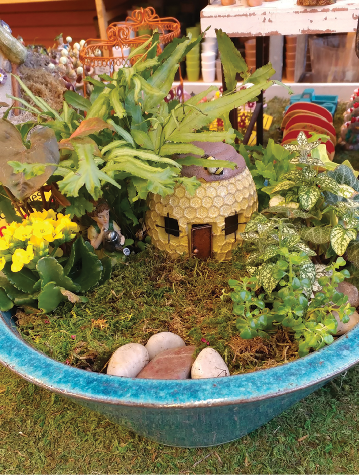Top 5 Trends In Miniature Gardening Garden Center Magazine