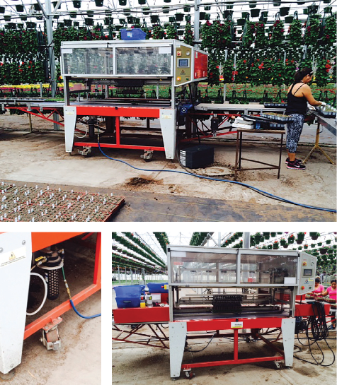 Agrinomix: Tailor to fit - Greenhouse Management