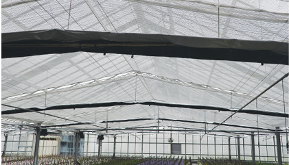 Choose The Best Shading Material For Your Greenhouse
