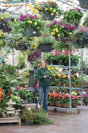 Lean on retailers and landscapers to share with you what varieties are catching the attention of end consumers, as they have direct interaction with them.