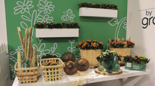 More ways wood and a neutral palette were incorporated into displays