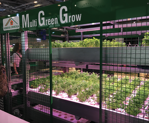 Multi Green Grow by Viemose-Driboga