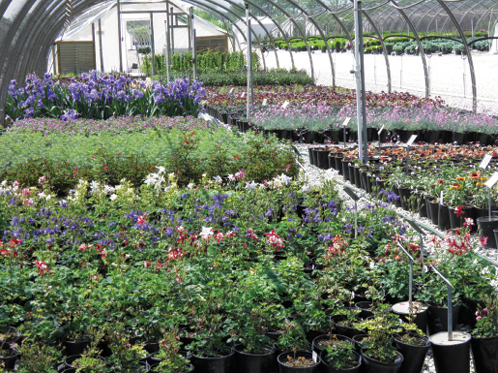 Schwope acquired Brehob Nursery (pictured) in late 2016. Brehob is a 45-year-old company with both wholesale and landscape distribution divisions.