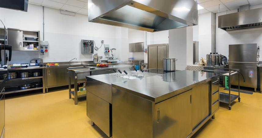 Commercial Kitchens: A Persistent Problem - PCT - Pest ...