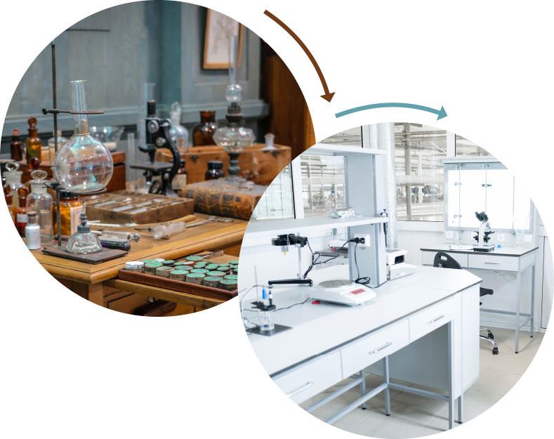 Cyclospora: An Elusive Emerging Pathogen - Quality Assurance & Food