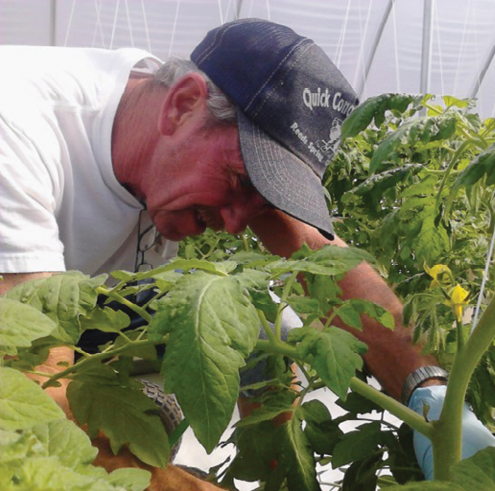 David Quick's parents grew tomatoes during the Great Depression. When the Great Recession hit in 2008, he decided he would do the same thing — but using hydroponic growing methods.