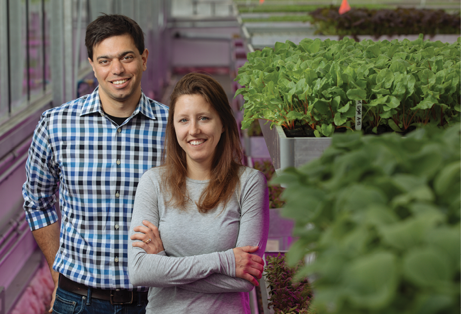 Taking Greenhouses To New Heights Produce Grower